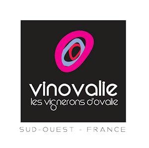 logo Vinovalie (remplace Cave de Fronton)